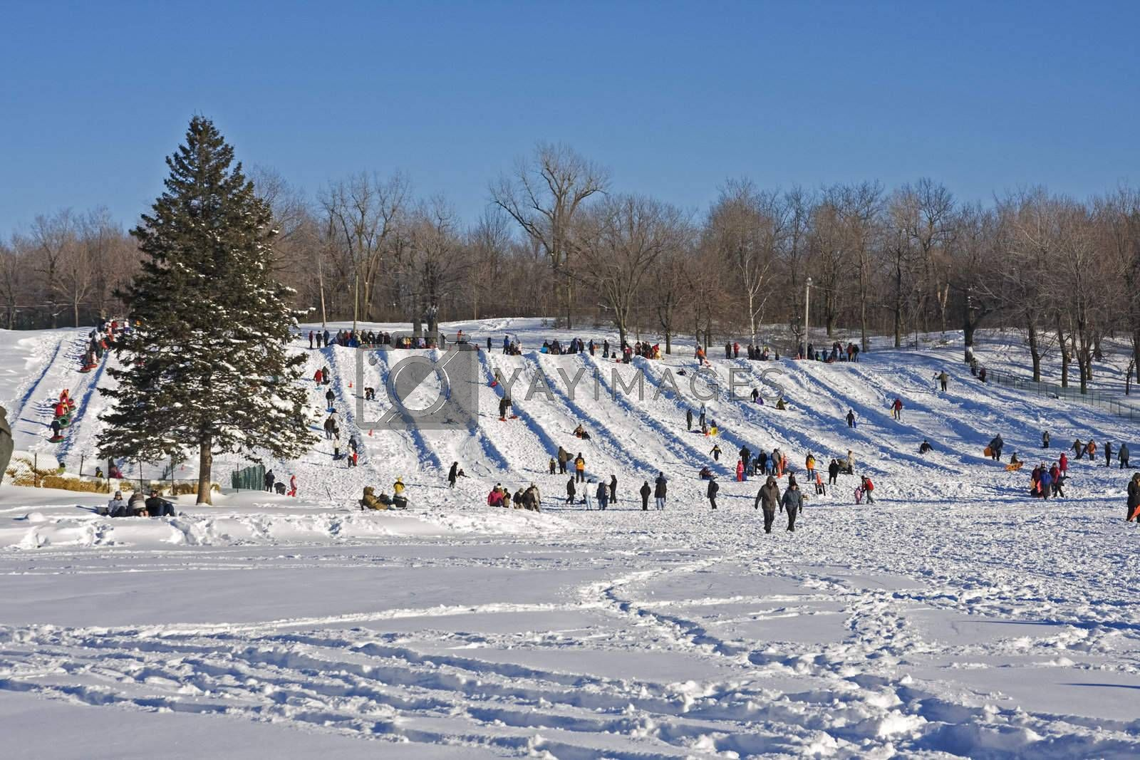 Urban winter scene, with people sliding on a slope