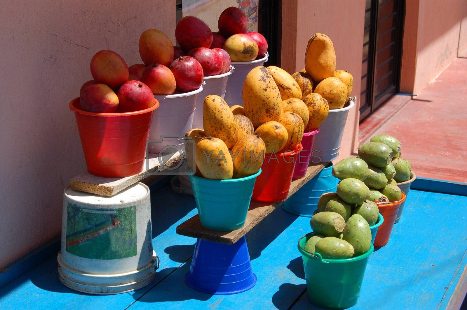Fruitstand by jorgeinthewater