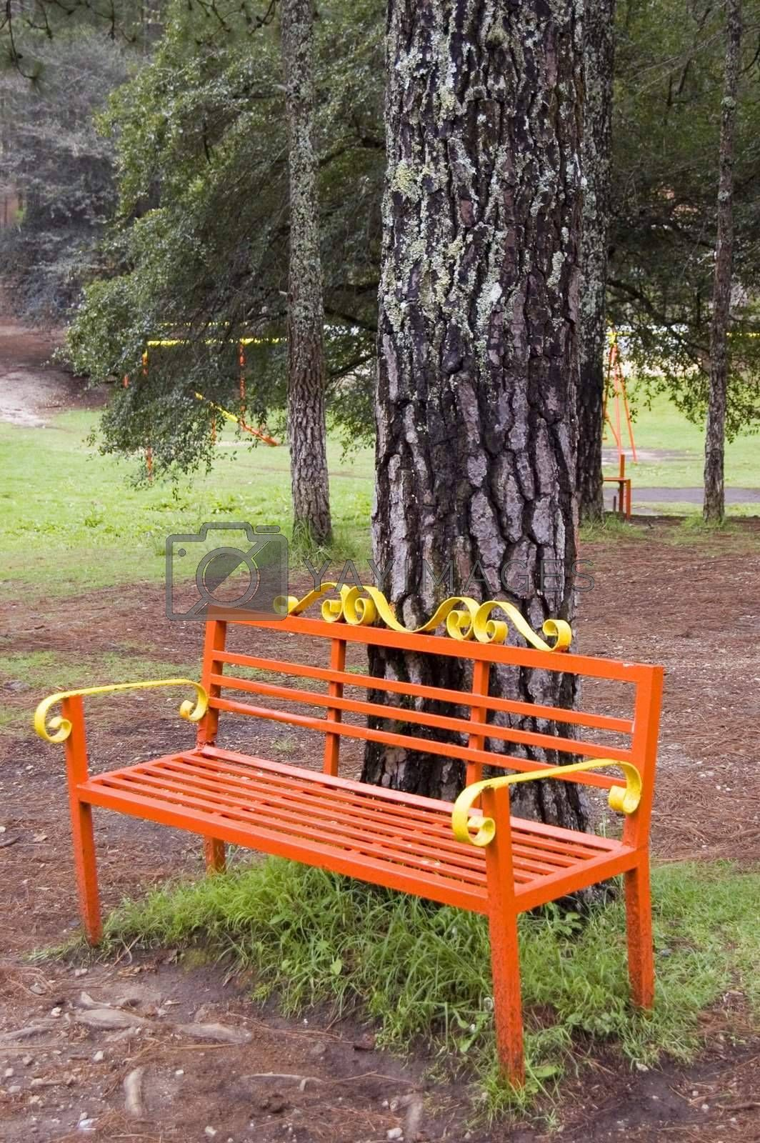 Park Bench in Chiapas by jorgeinthewater