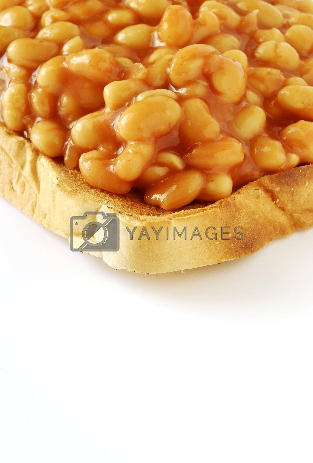beans on toast 01 by massman
