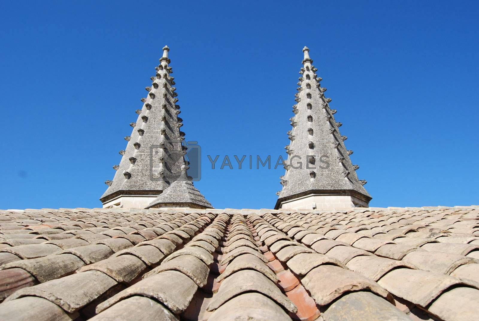 Avignon, roof of popal palace in Provence, France