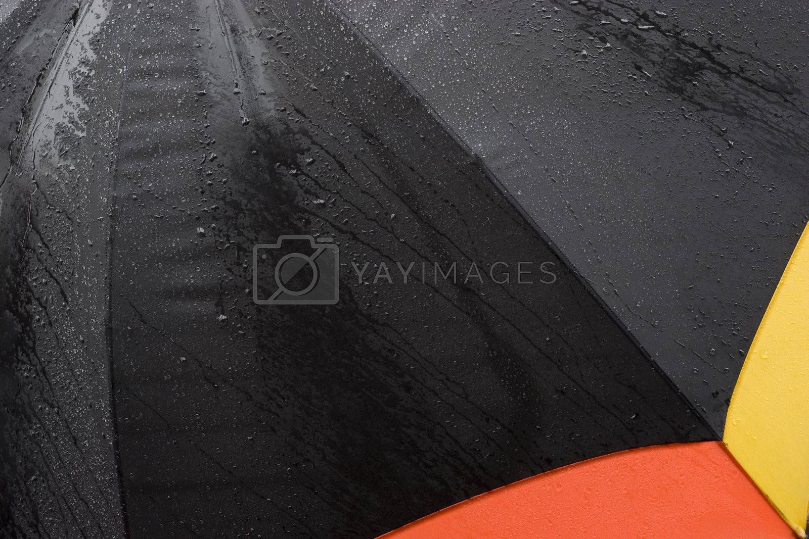 Detail of an umbrella in the rain