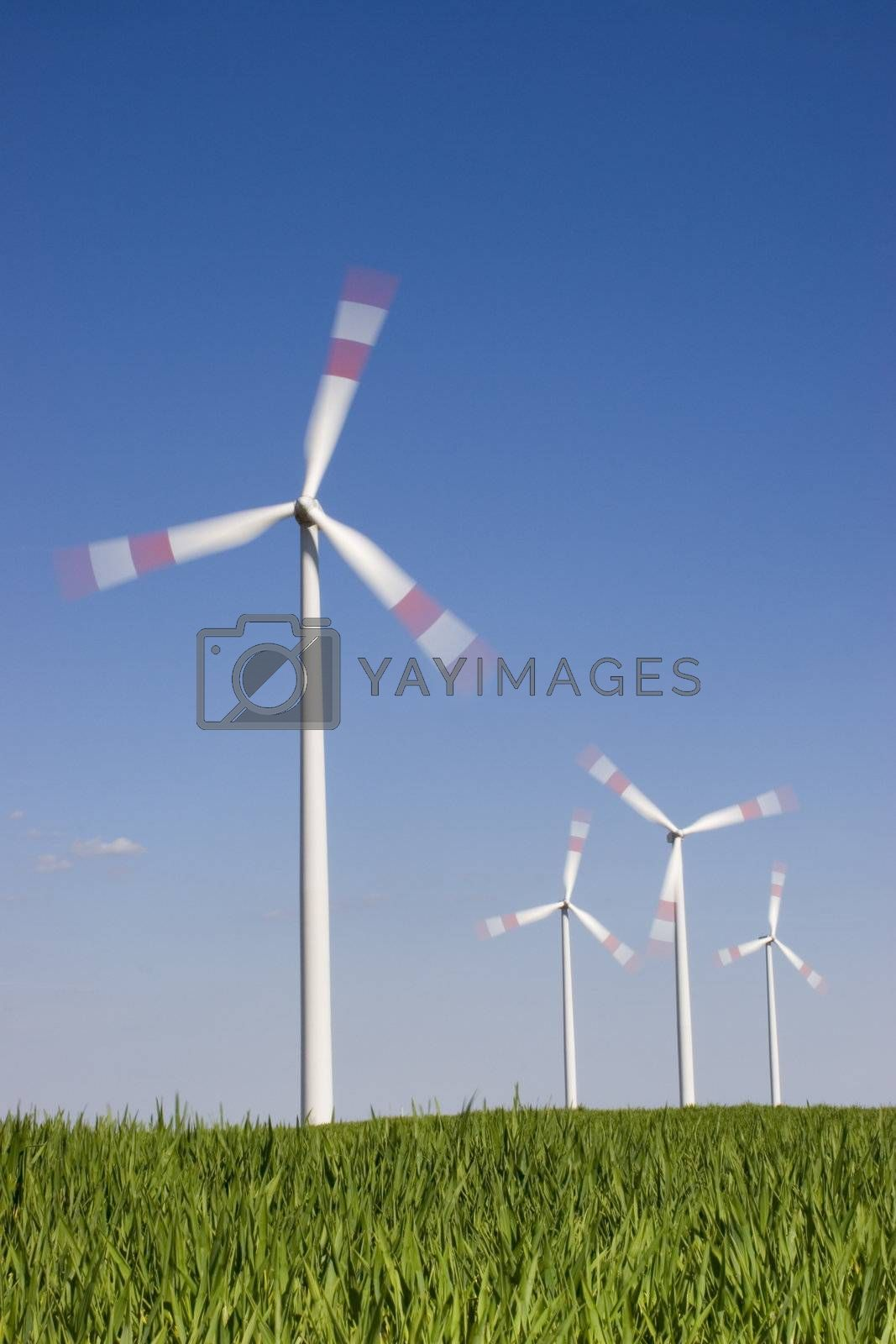 Four motion blurred wind-turbines against the blue sky with green grass in the foreground