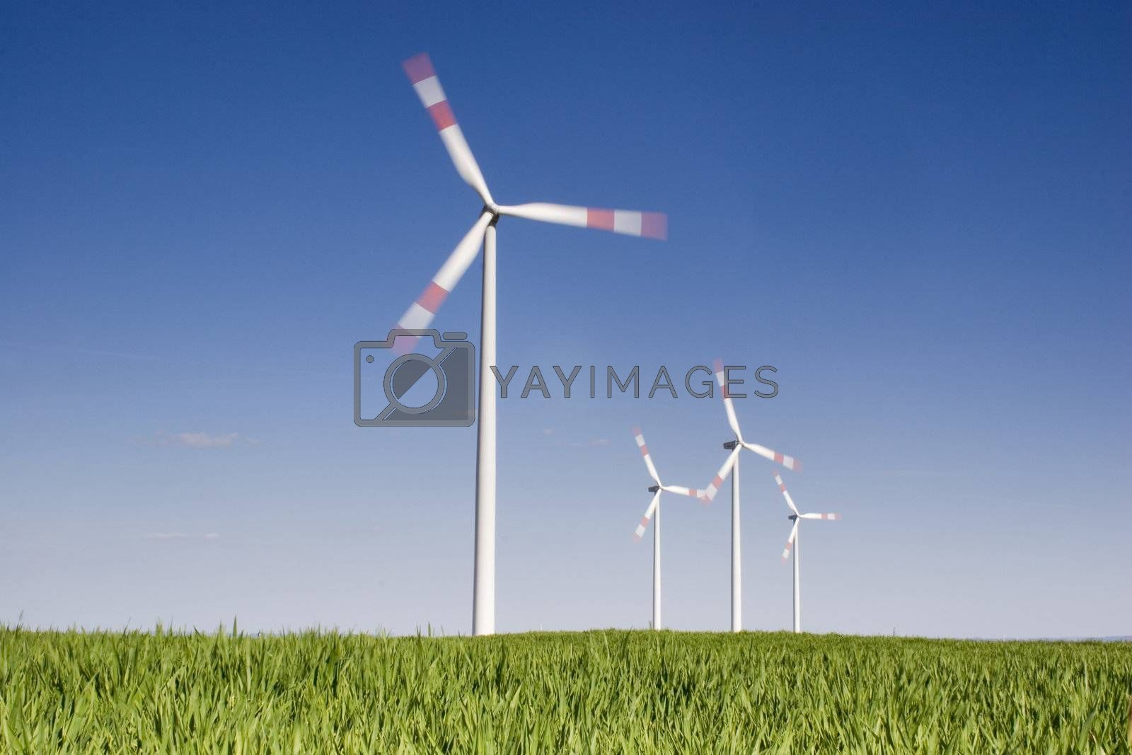 Rotating wind-turbines with green grass in the foreground against blue sky. Motion blurred propellers.