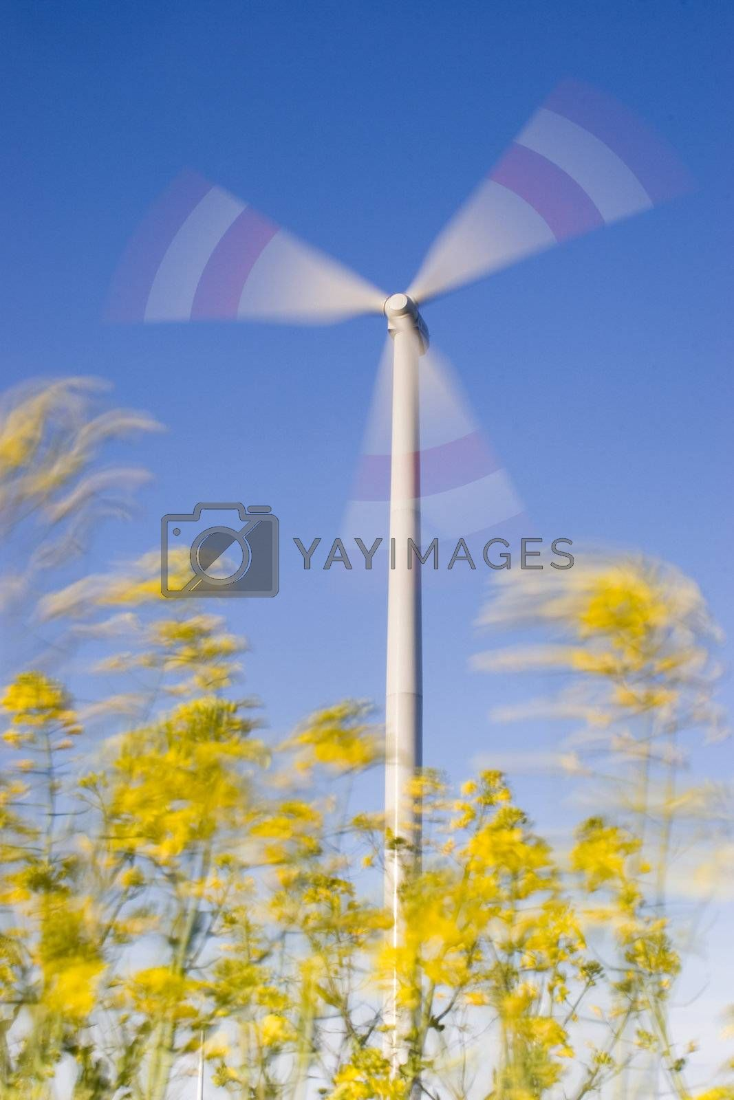 Rotating wind-turbine and motion blurred yellow flowers in the foreground