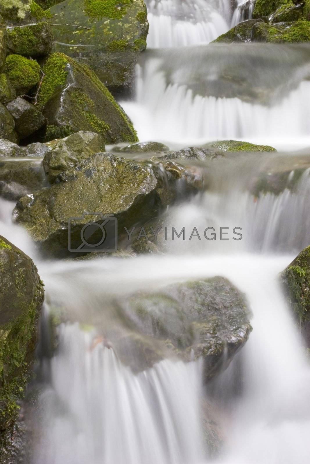 Cascades by ArtmannWitte
