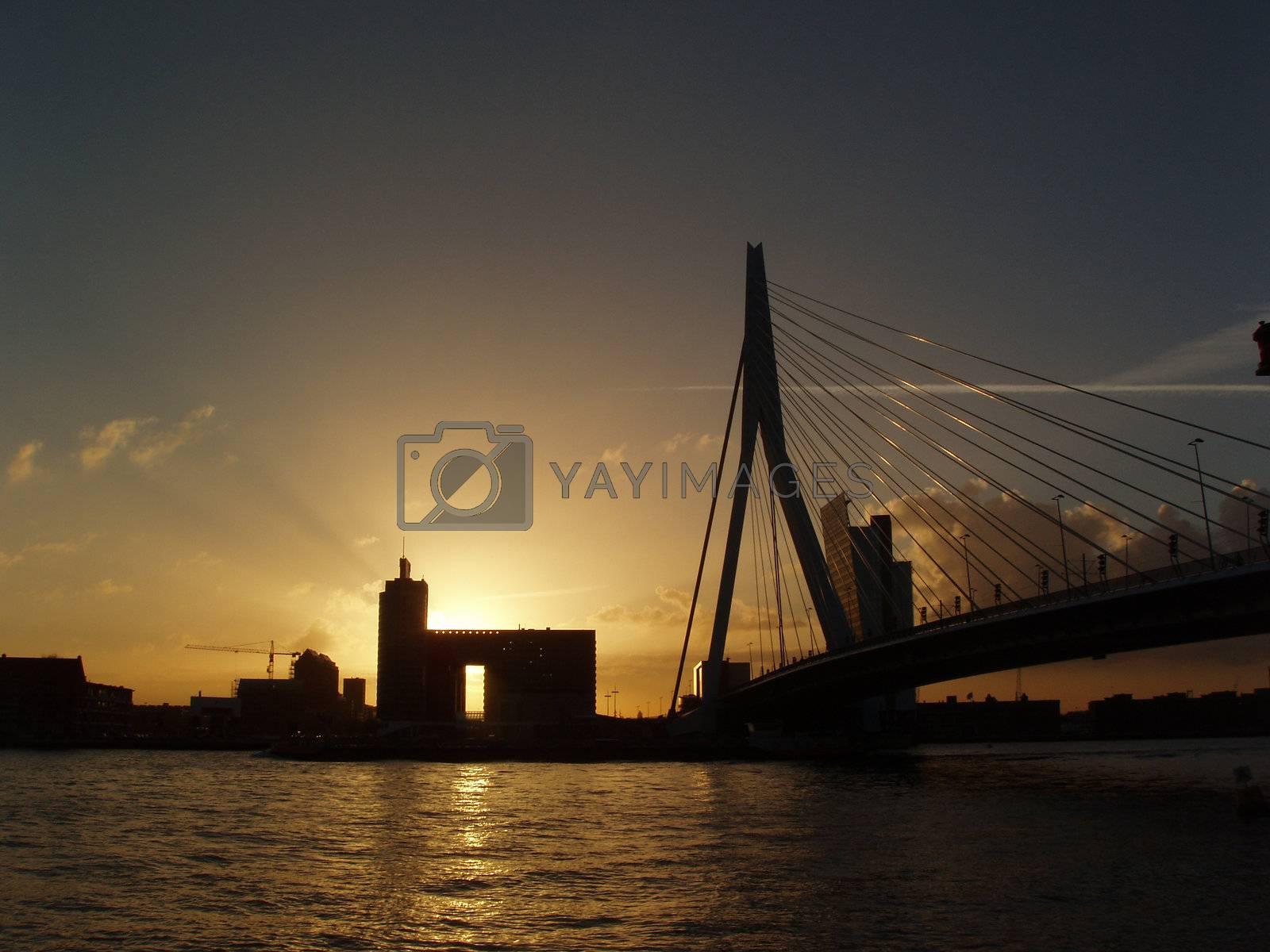 Erasmus Bridge in Rotterdam, Holland