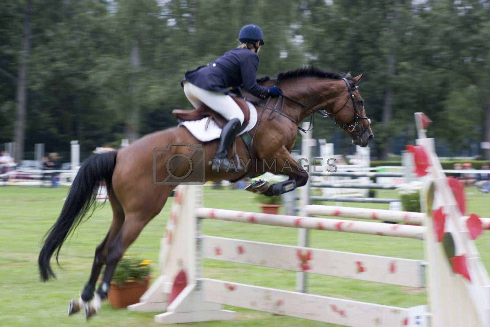 Show jumping by ArtmannWitte