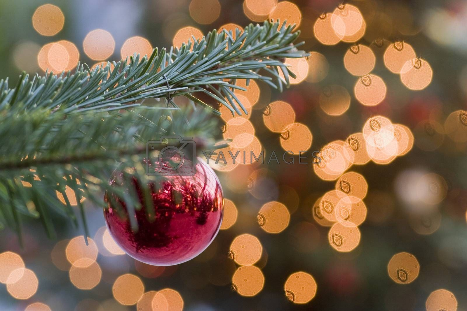 Branch of a christmas tree with a christmas bauble and the lights of another tree in the background
