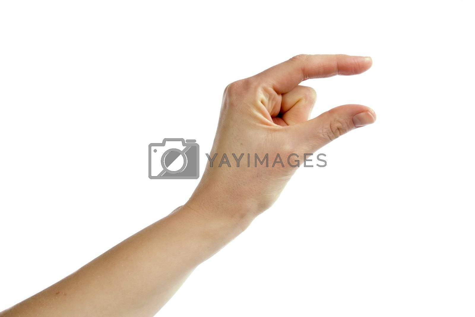 An adult female hand conveying the message of something small.