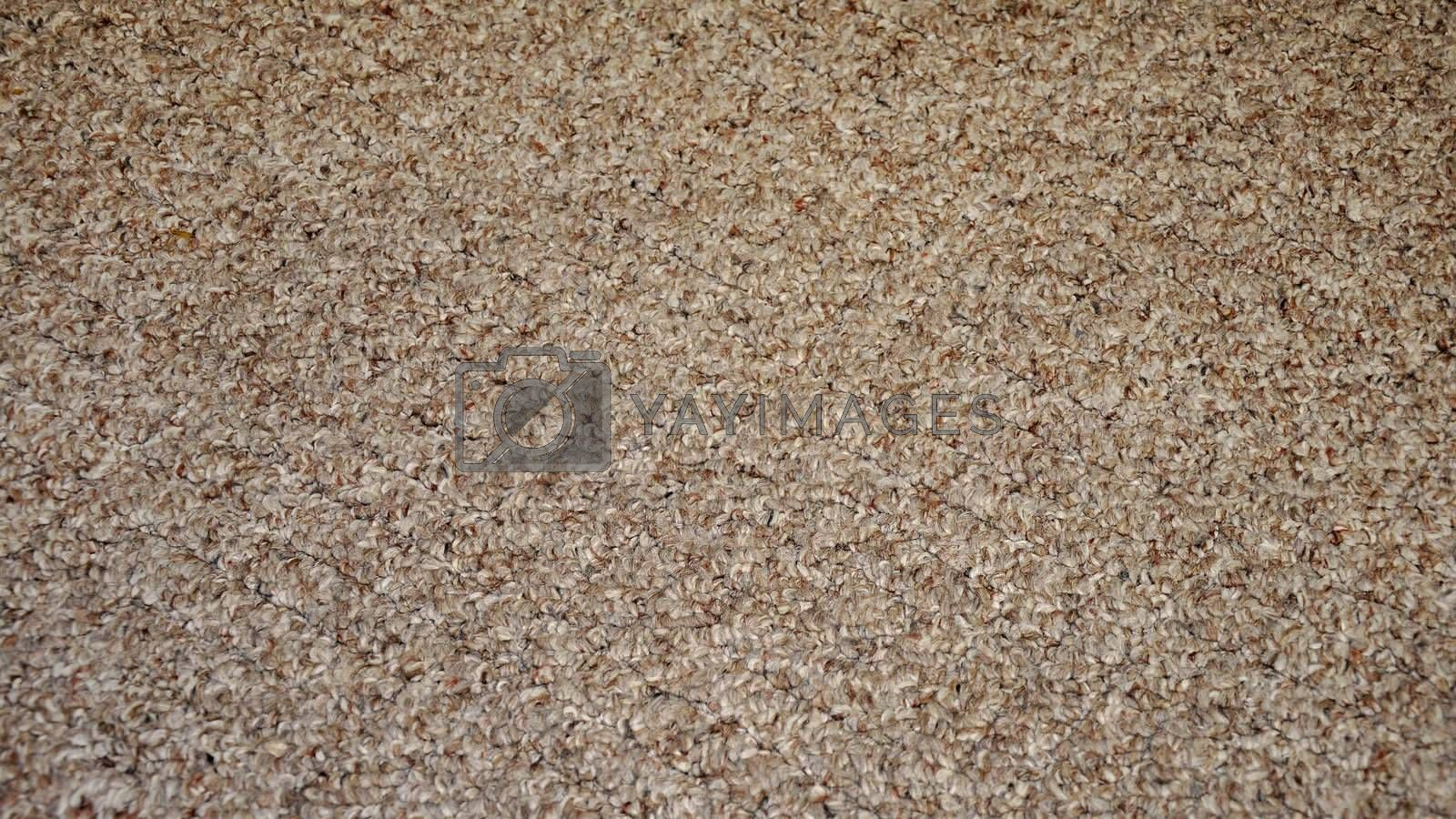 abstract view of a textured brown and tan carpet