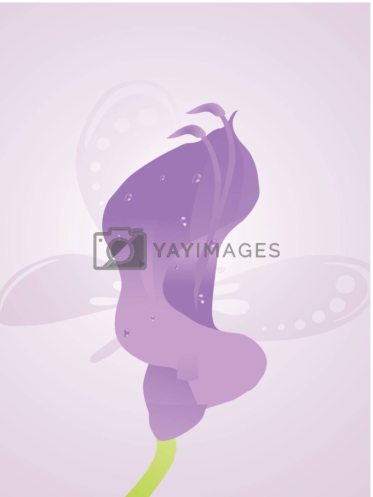 beautifull background with flower and butterfly design5