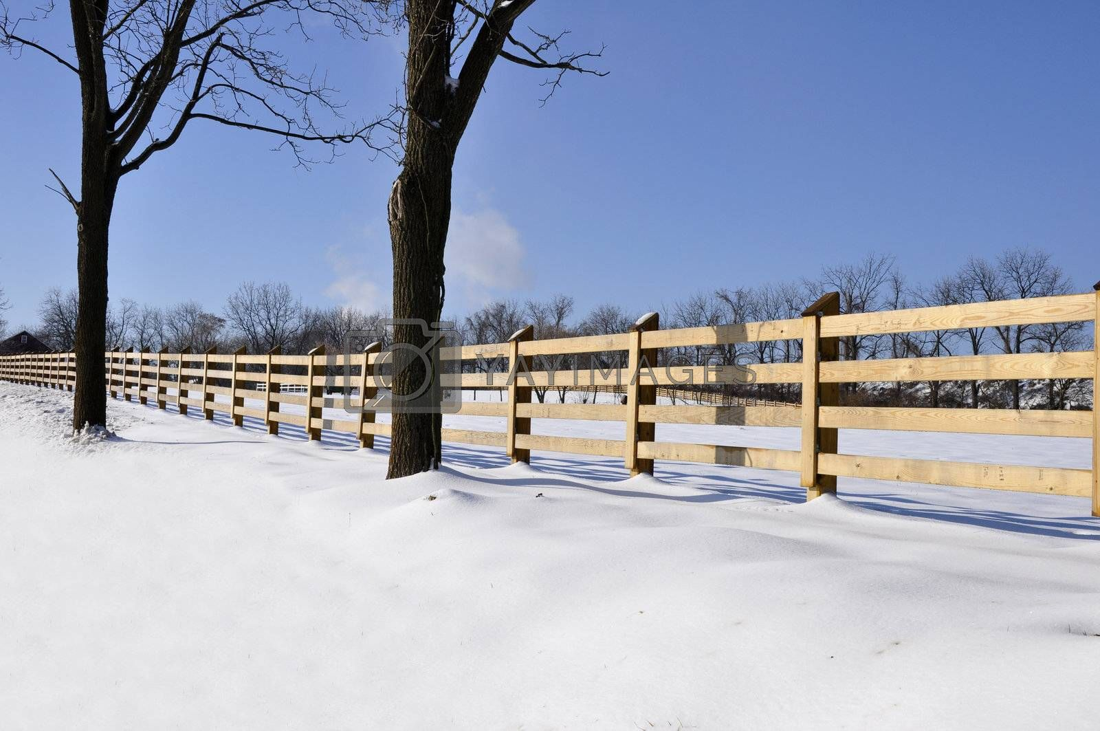 wood fence by snow covered field