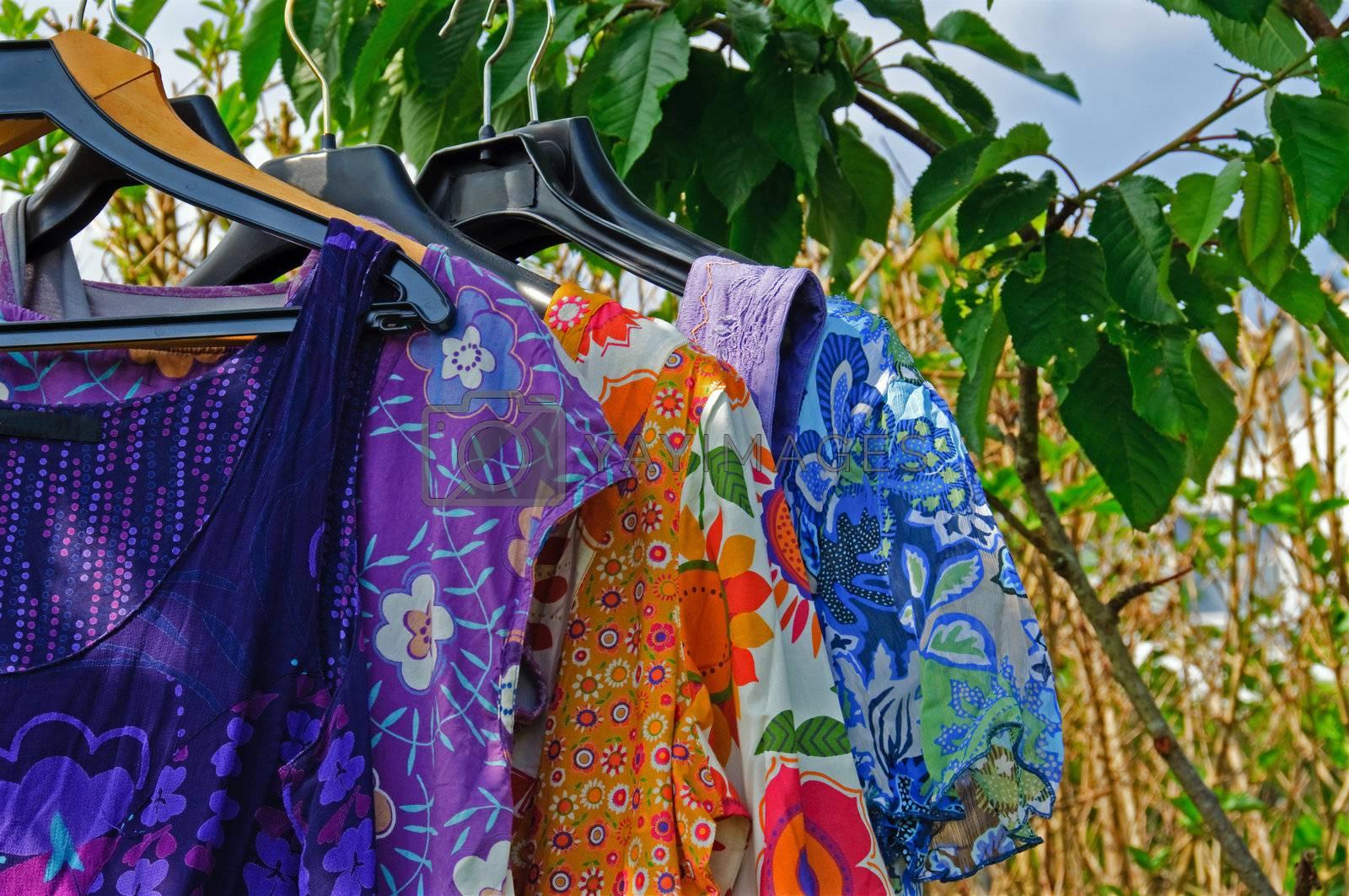 Summer dresses hanging in a garden