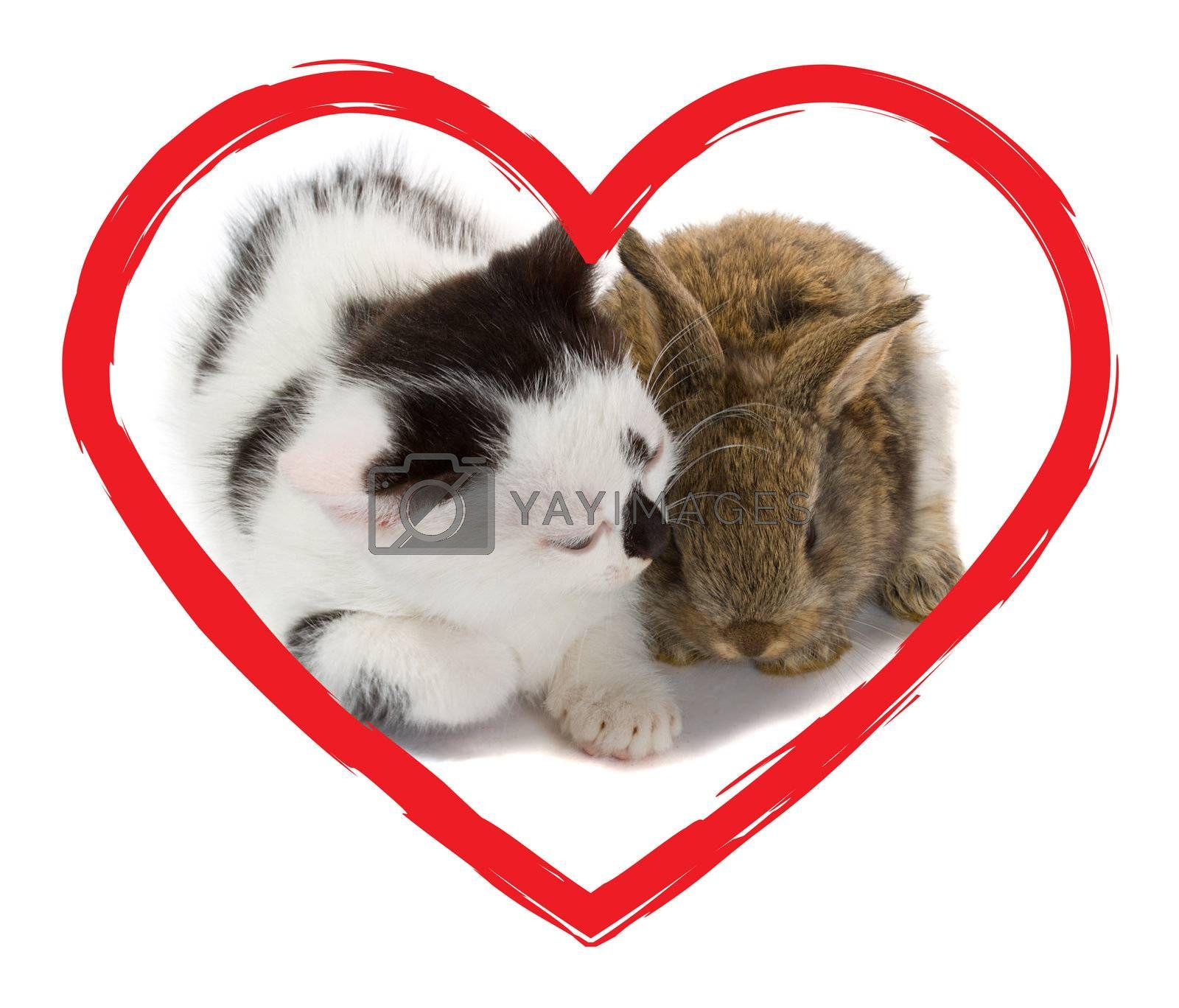 kitten and bunny in heart, isolated on white