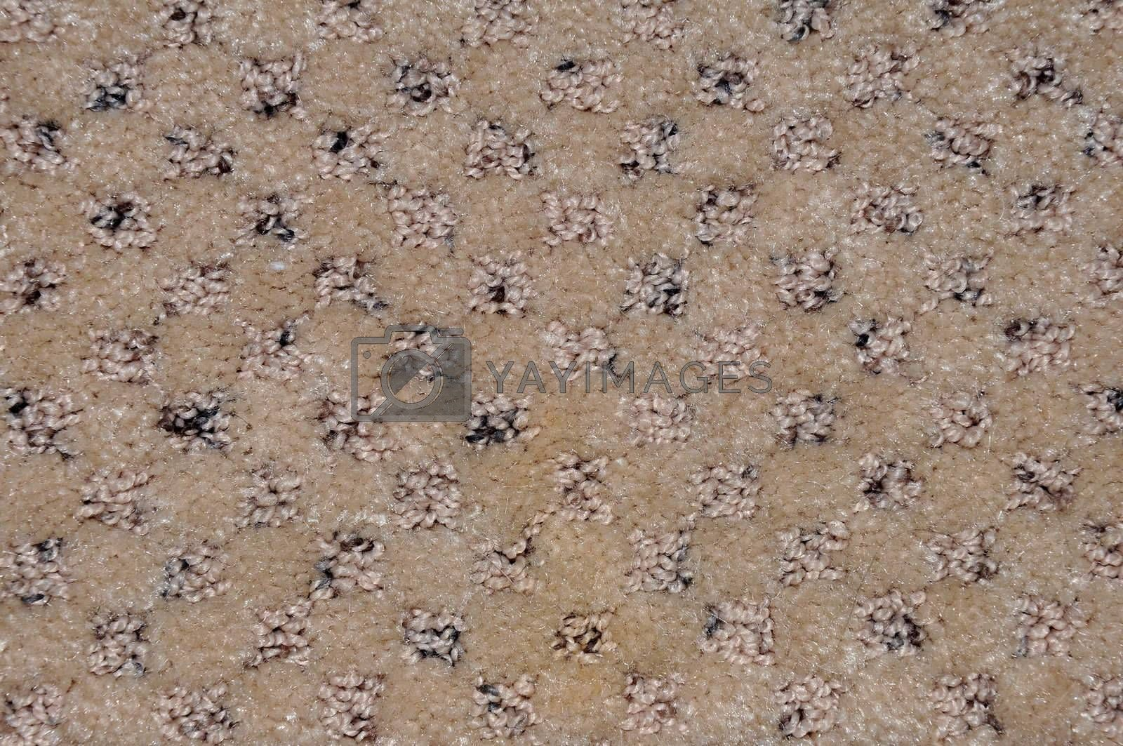 abstract view of a brown and tan carpet