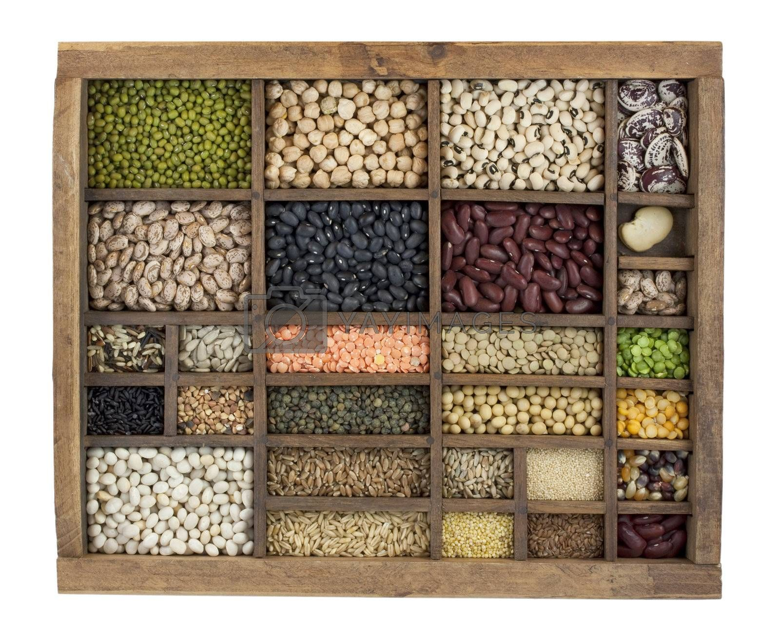 variety of beans, grains and seeds in vintage typesetter box by PixelsAway