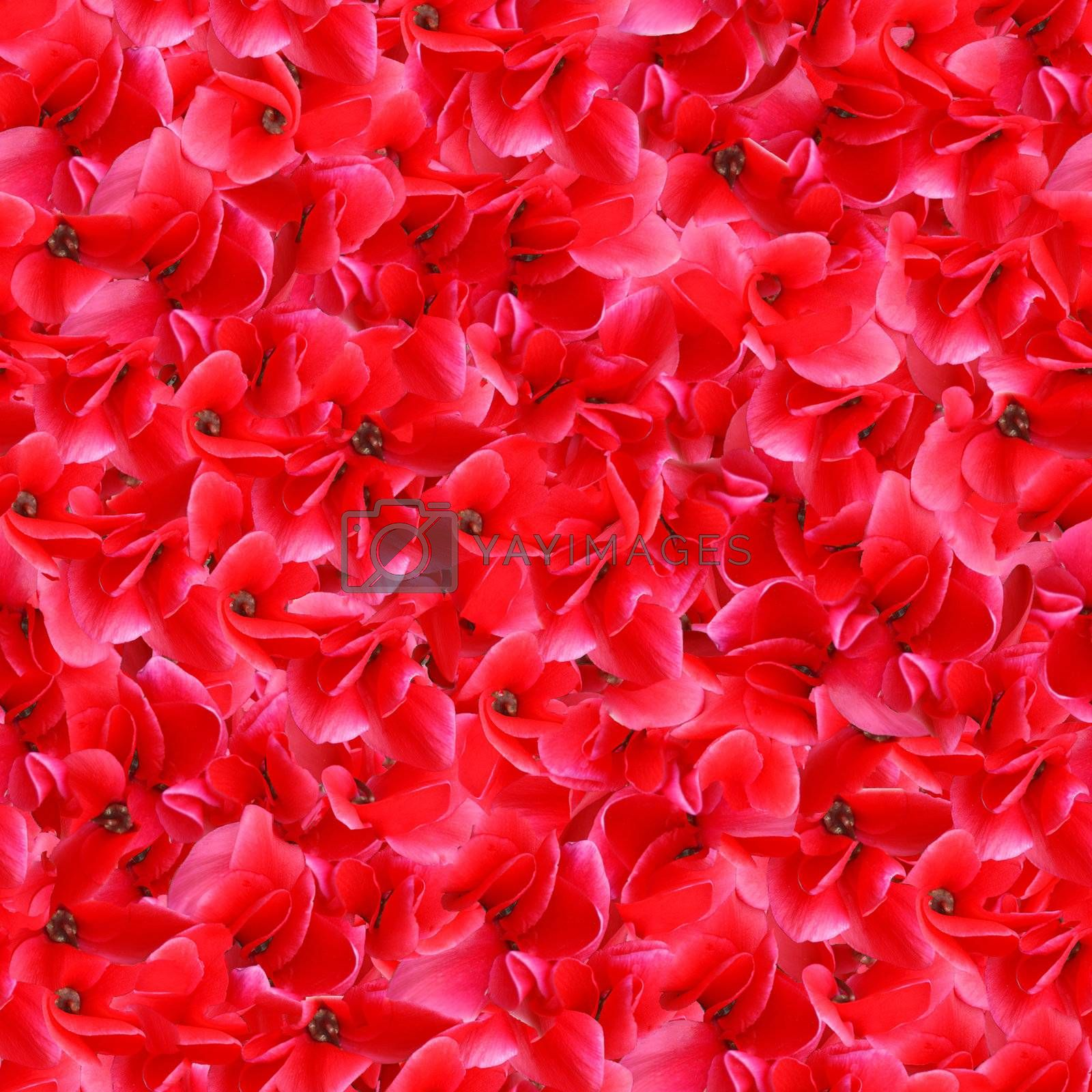 Red Flowers Seamless Pattern by goldenangel