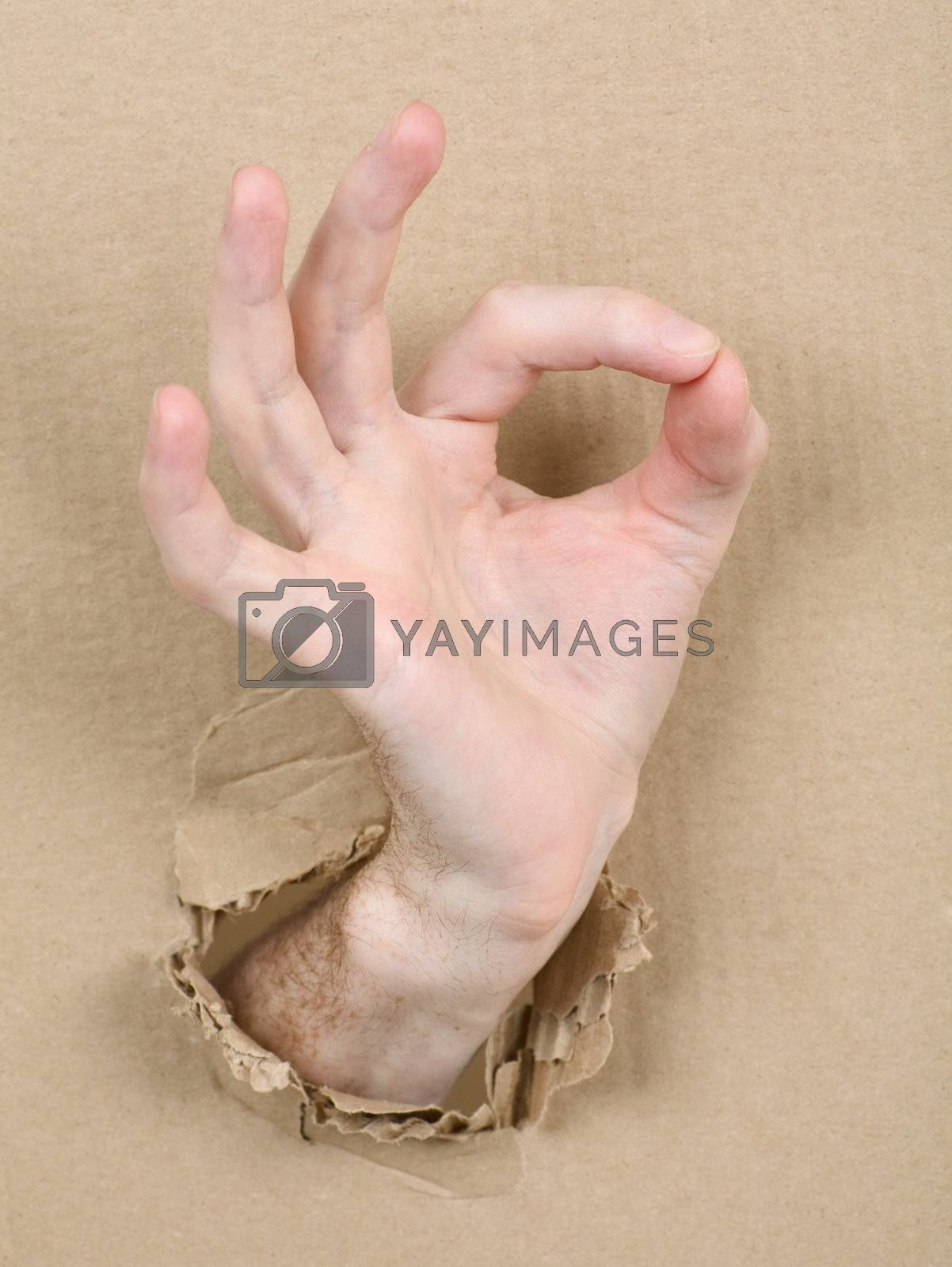 Gesture male hand through cardboard by pzaxe