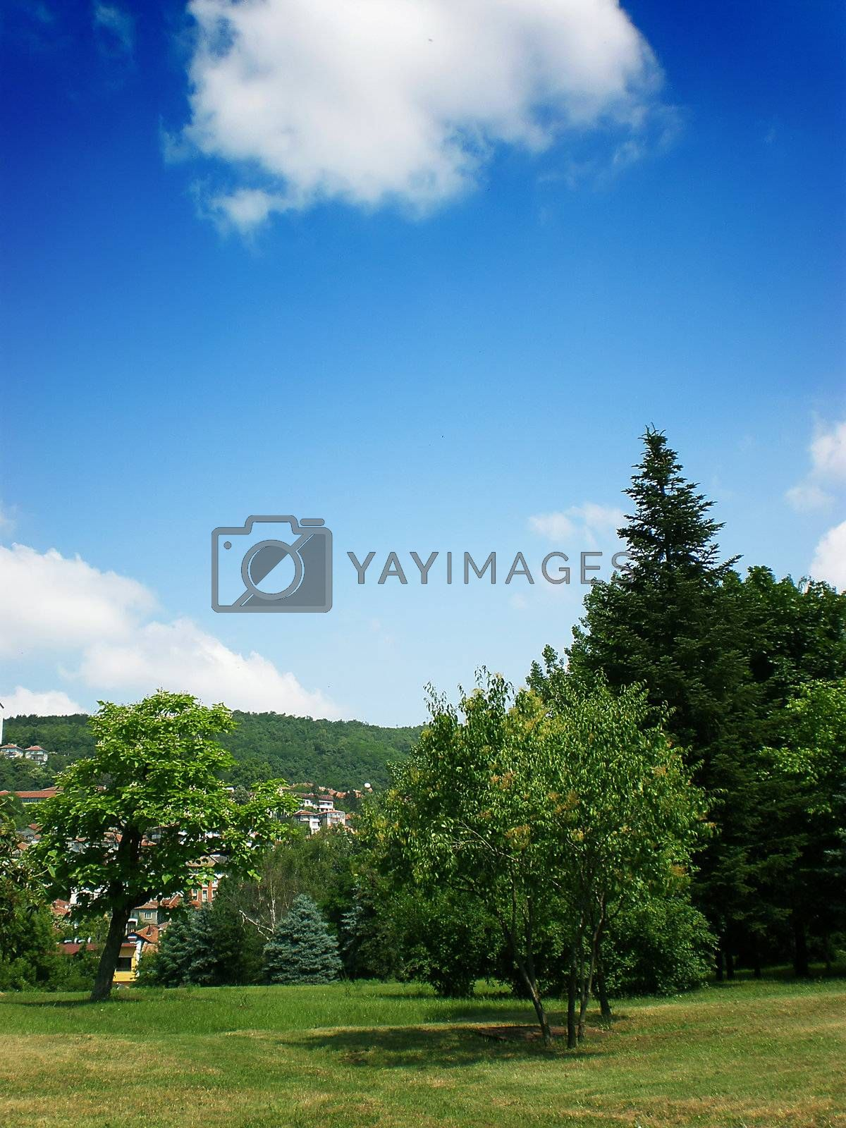 Royalty free image of landscape by Dessie_bg