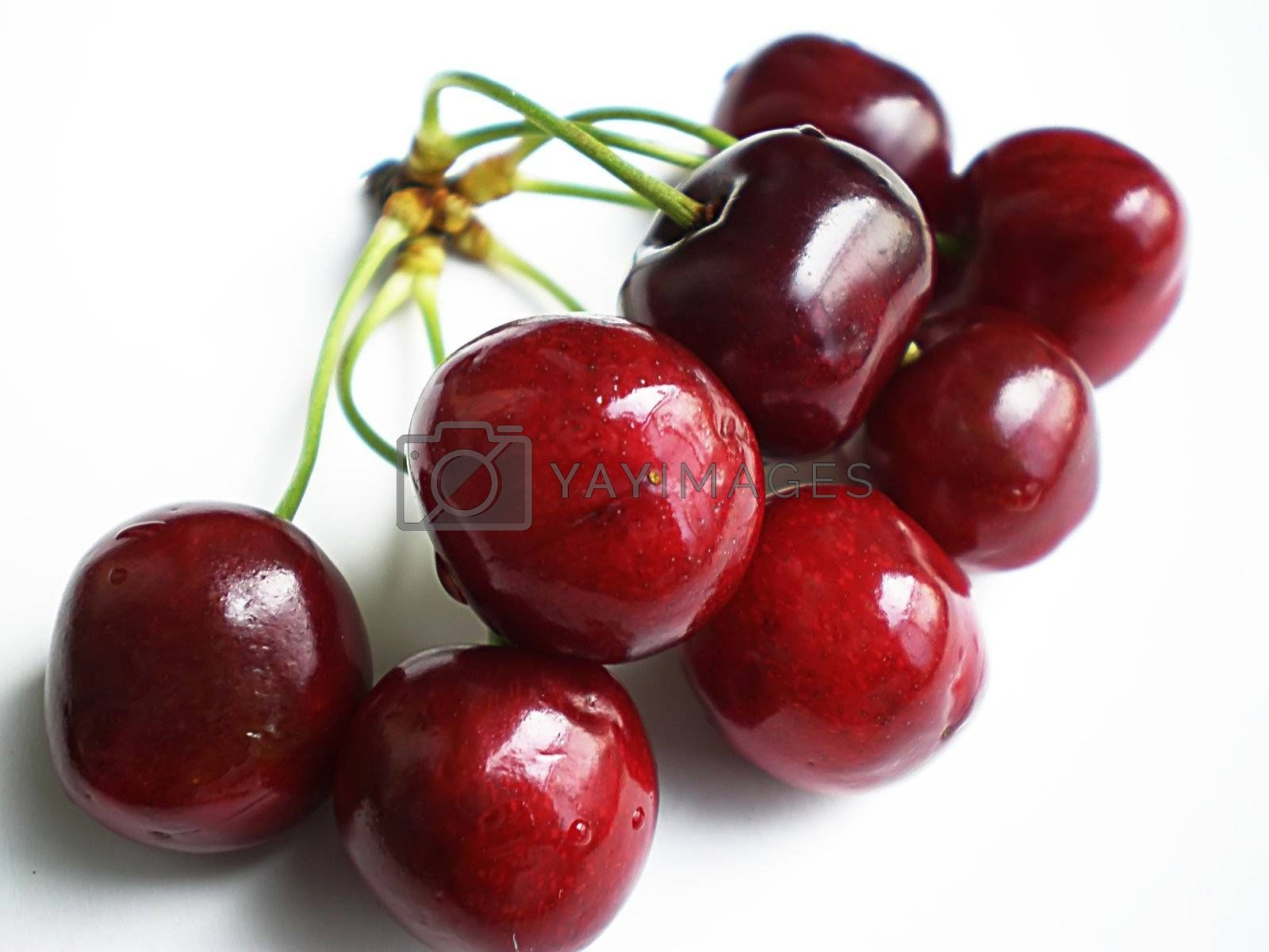 Royalty free image of cherries by Dessie_bg