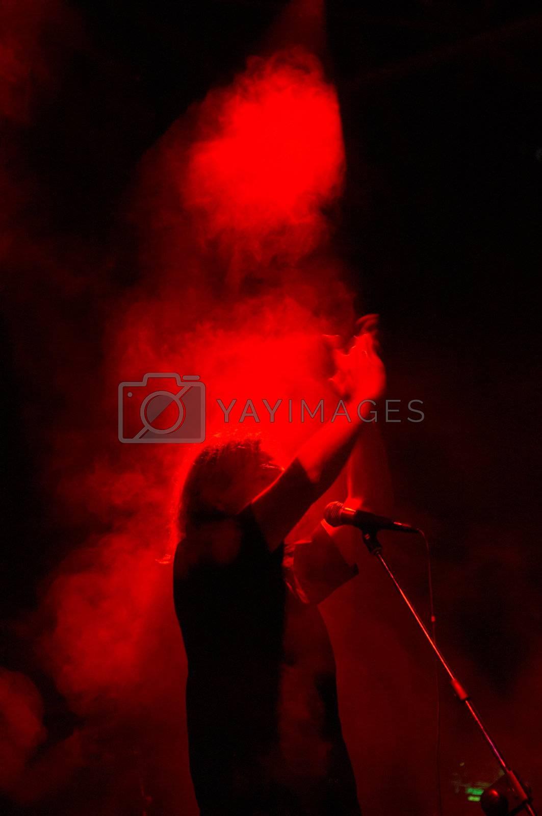Rock-singer on live concert
