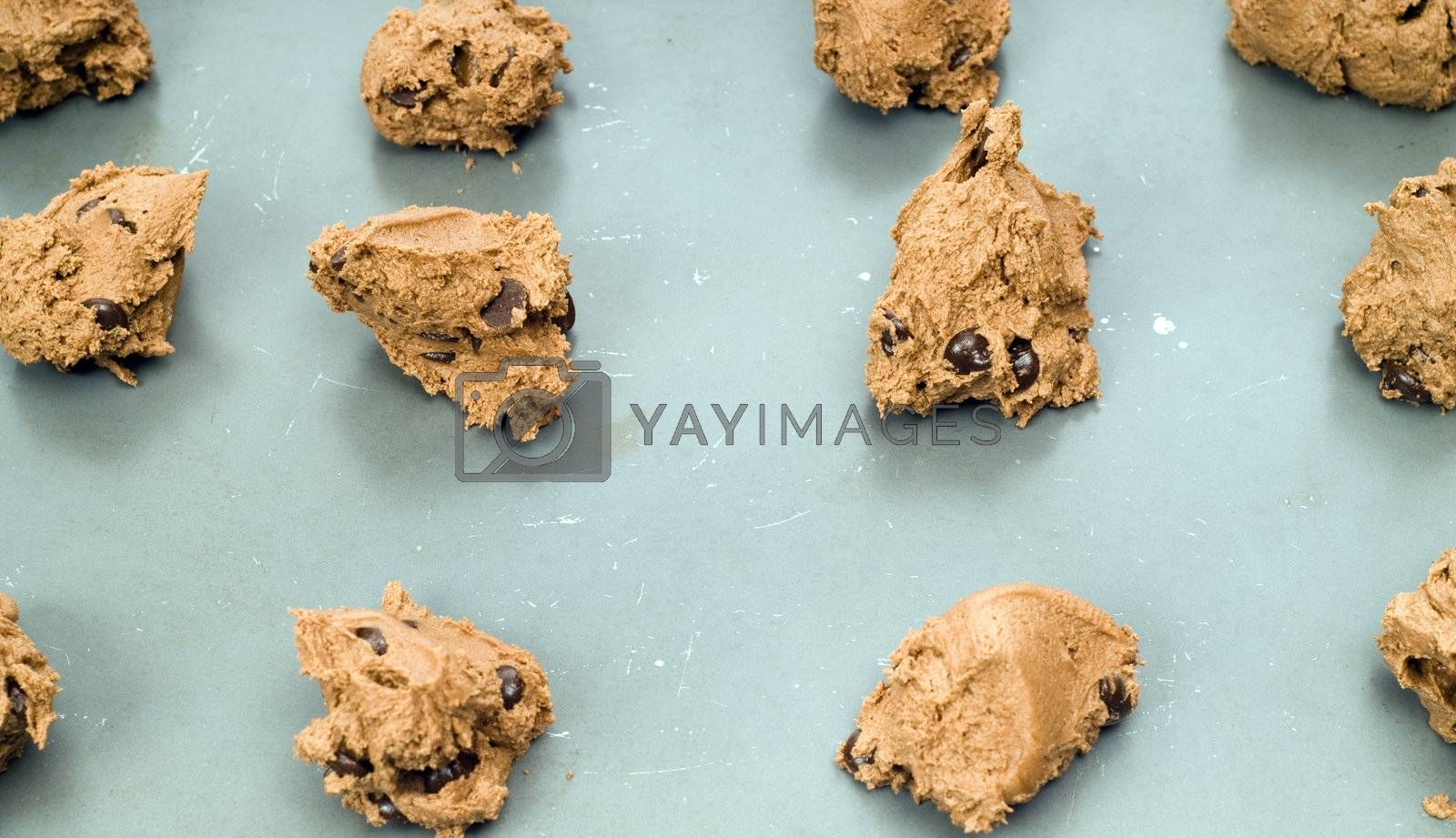 Royalty free image of Chocolate Chip Cookies by dragon_fang