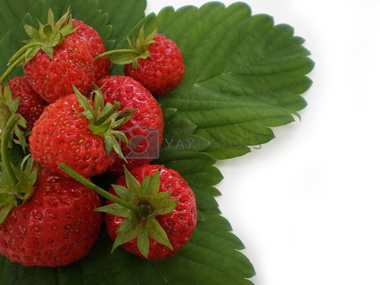 strawberries by Dessie_bg