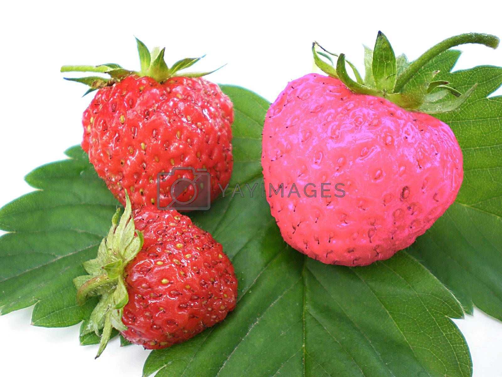 Royalty free image of unique strawberry by Dessie_bg