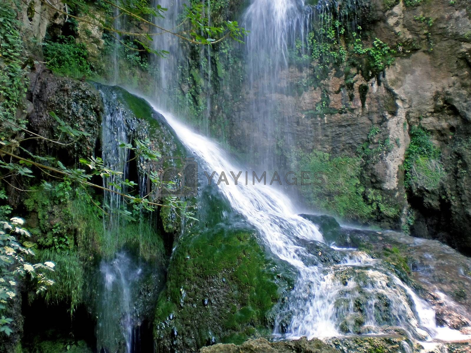 Royalty free image of waterfall by Dessie_bg