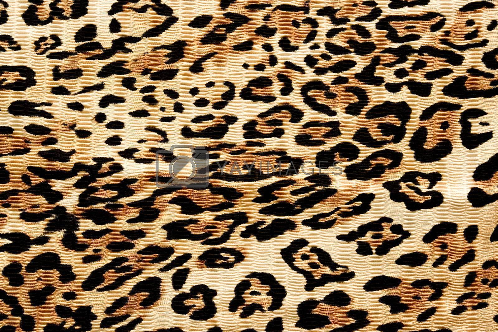 wallpaper of tiger texture. animal skin photo