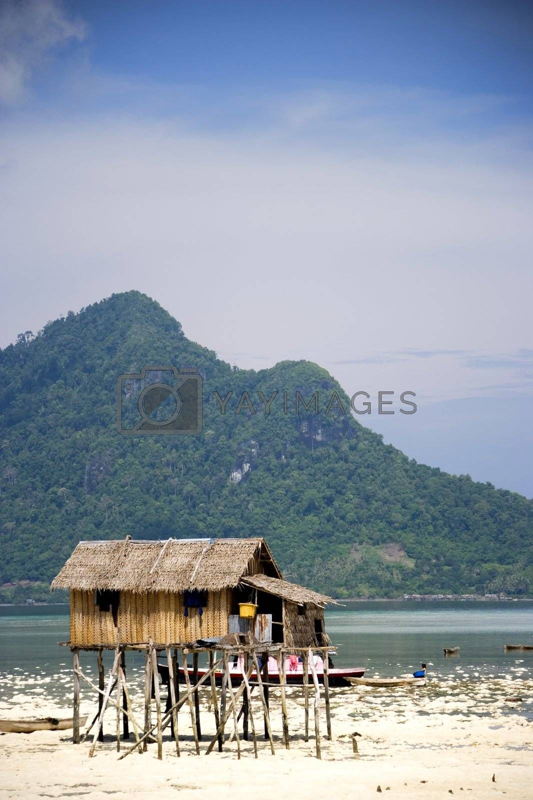 Royalty free image of Native Huts on Stilts by shariffc
