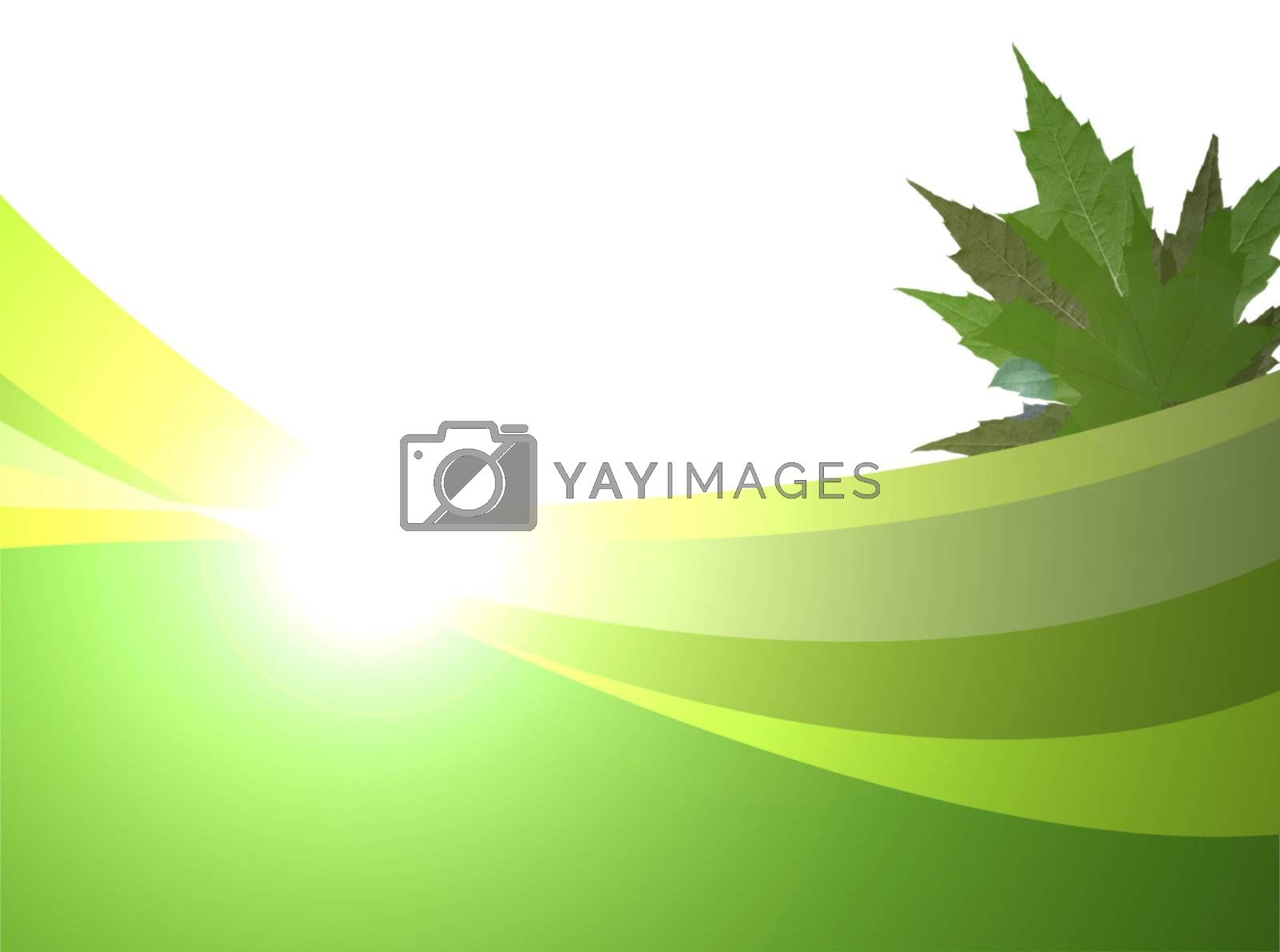 green waves with plant on white background