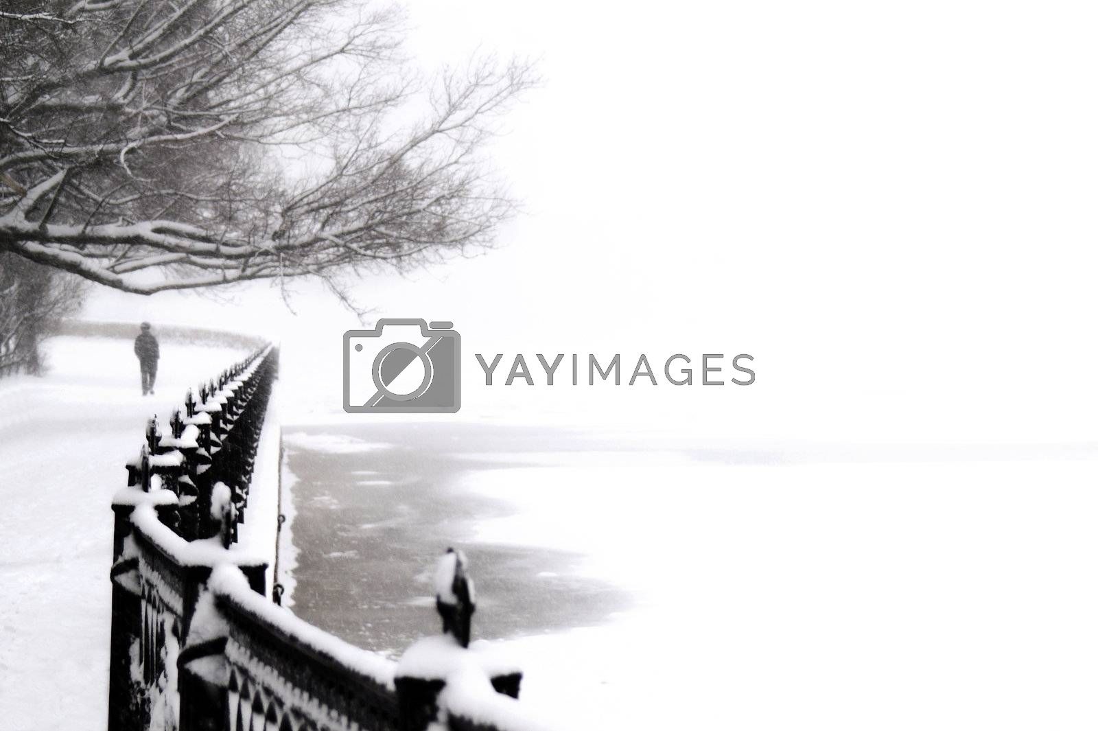 Kronverk embankment at snowfall in Saint Petersburg, Russia.
