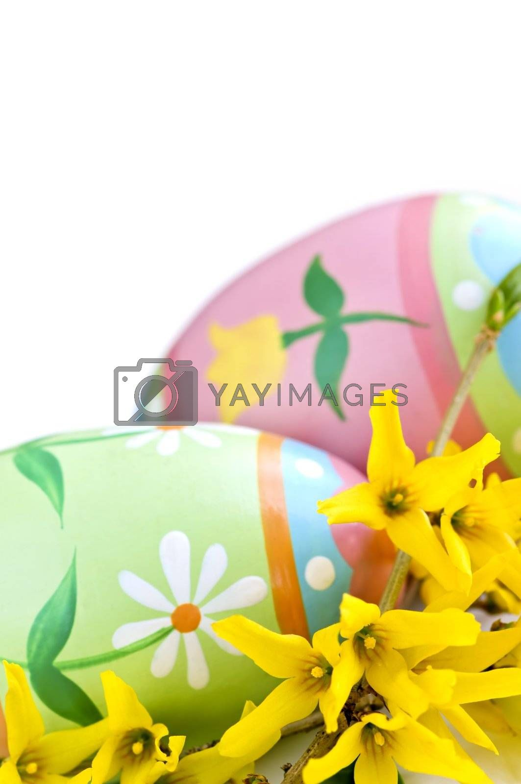 Easter eggs arrangement with spring flowers isolated on white background