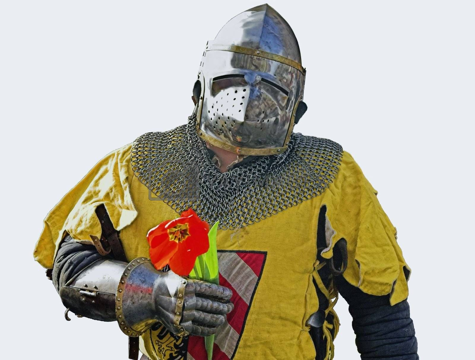 Knight with flower by simfan