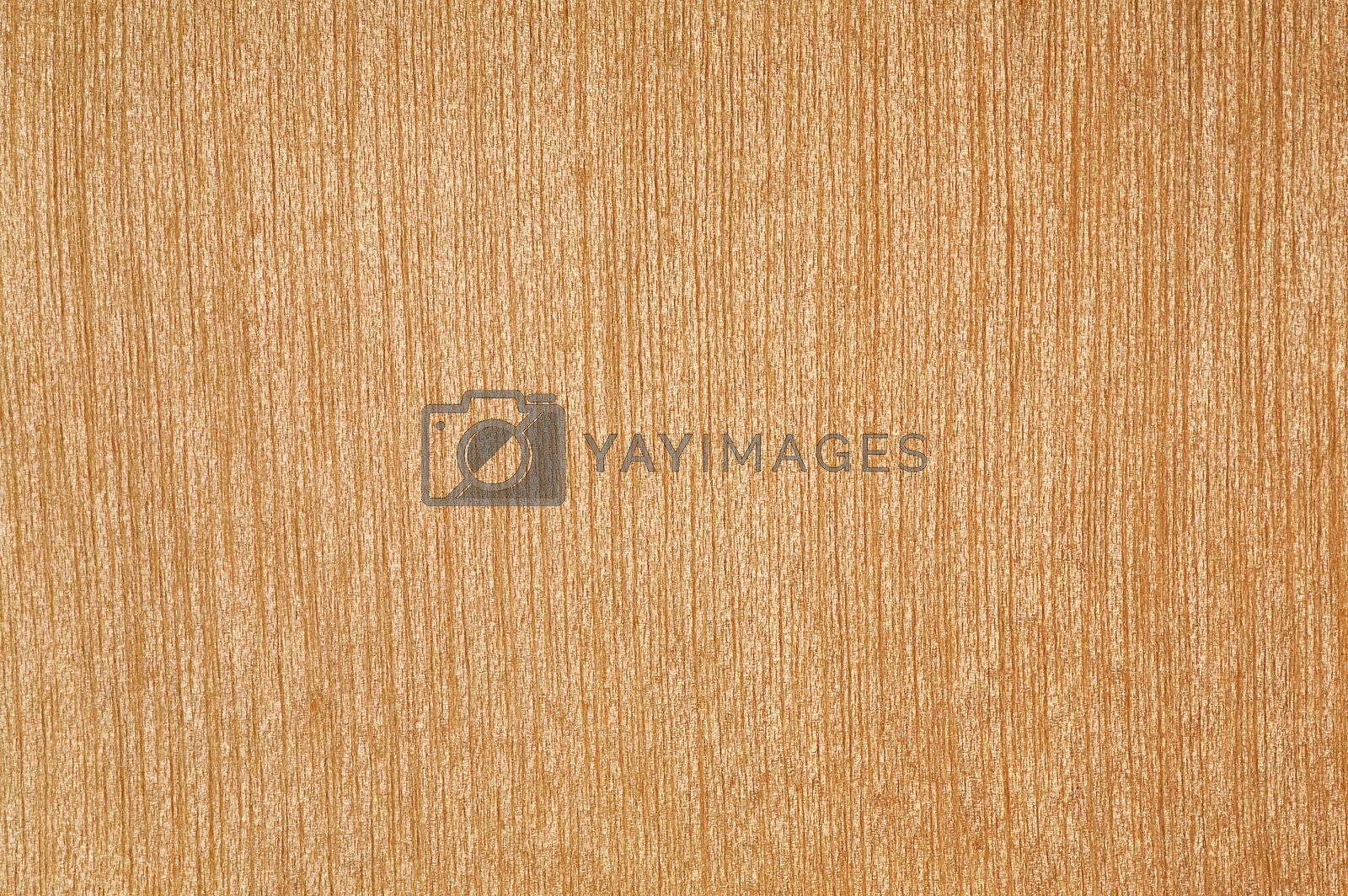 Abstract light yellow wood texture