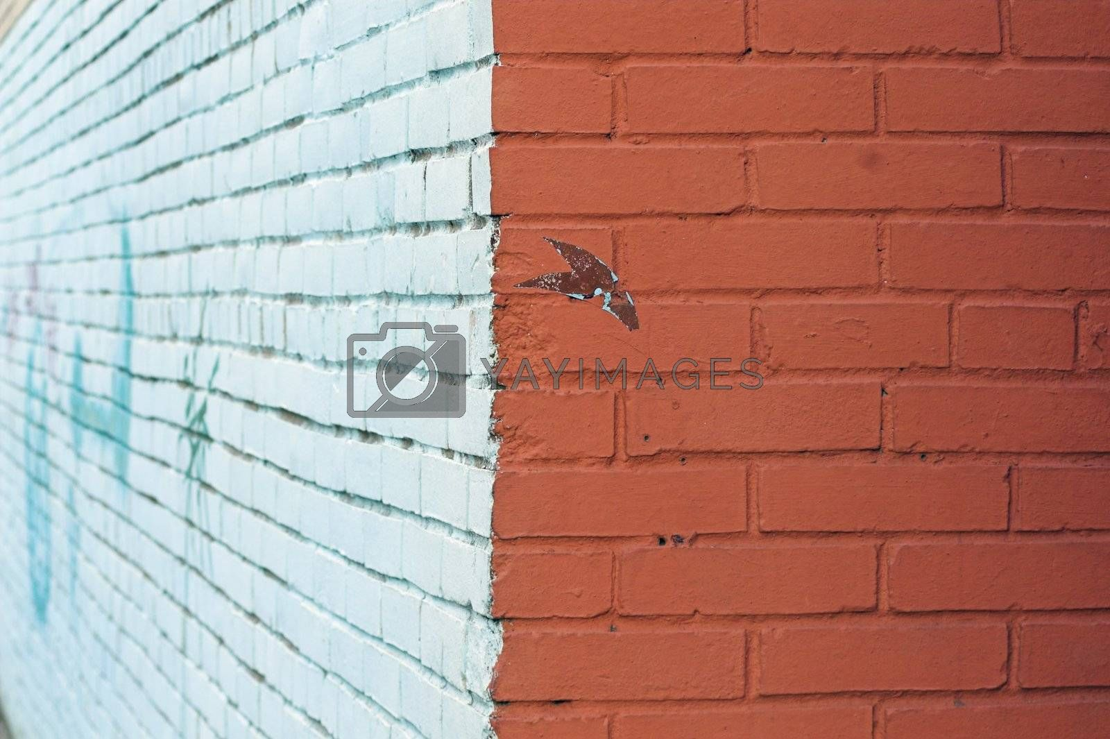 Close-up view of corner and painted wall with graffiti