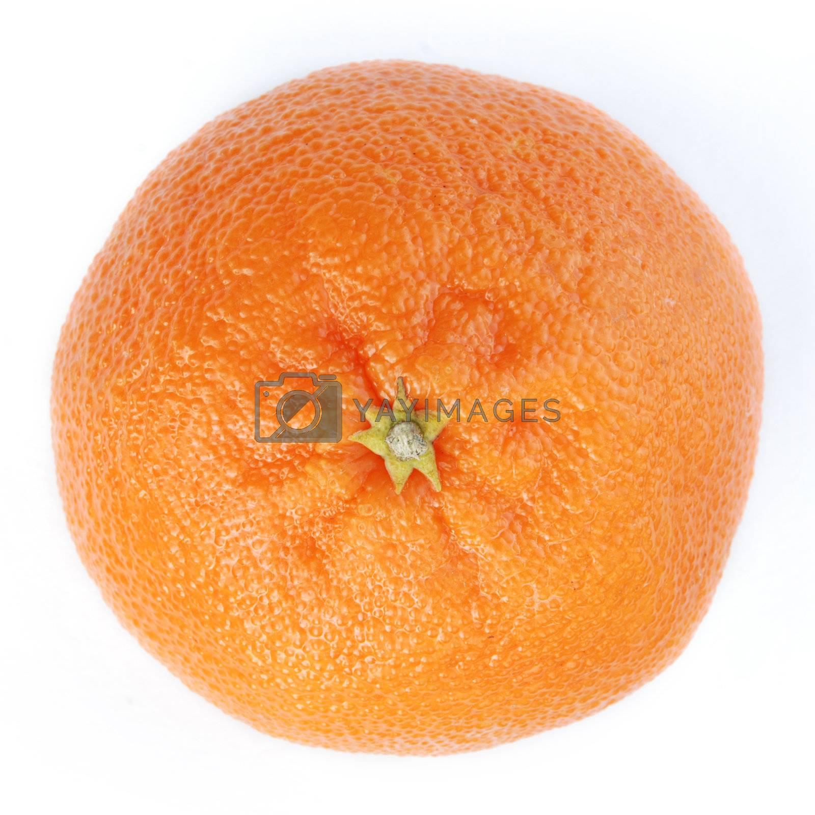 Royalty free image of orange by ArtemPasha