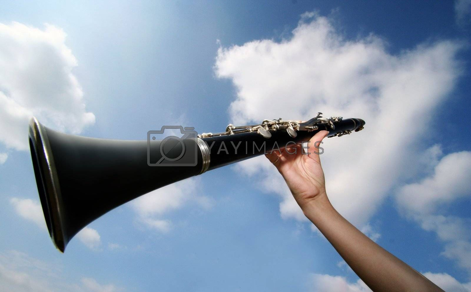 Royalty free image of Clarinet by AniaFotKam