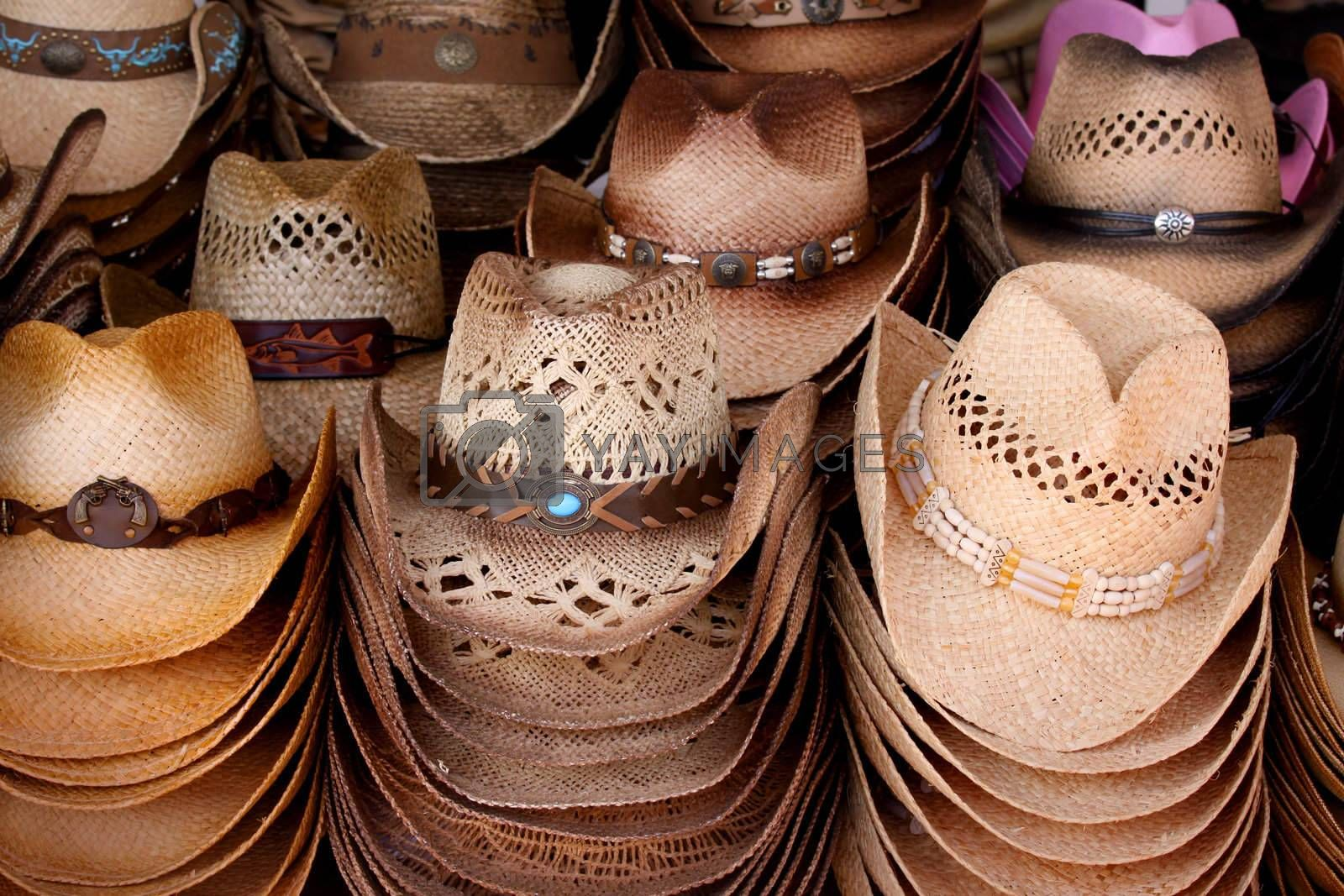 Royalty free image of Cowboy hats by snehit