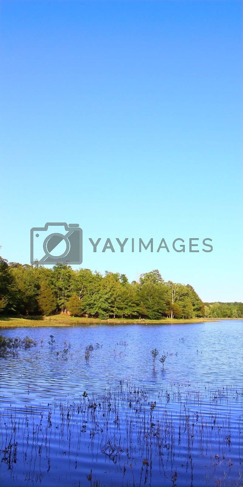 Royalty free image of Tishomingo State Park - Mississippi by Wirepec