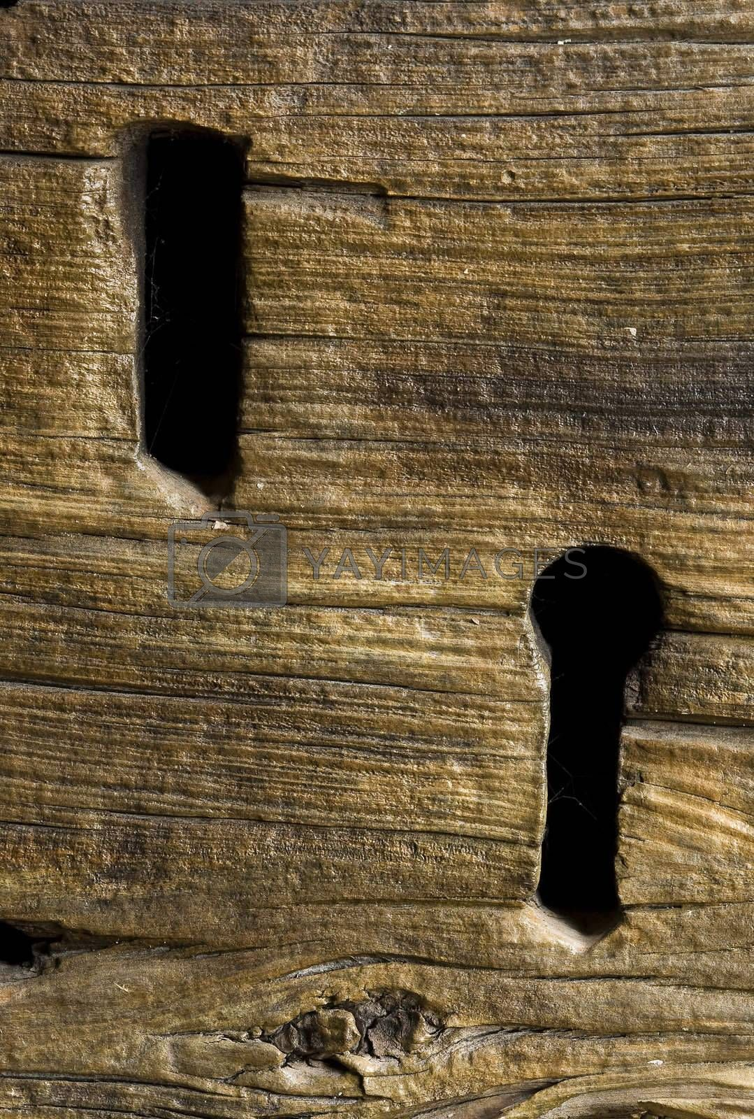 Royalty free image of Key holes of an ancient house door by AlessandroZocc