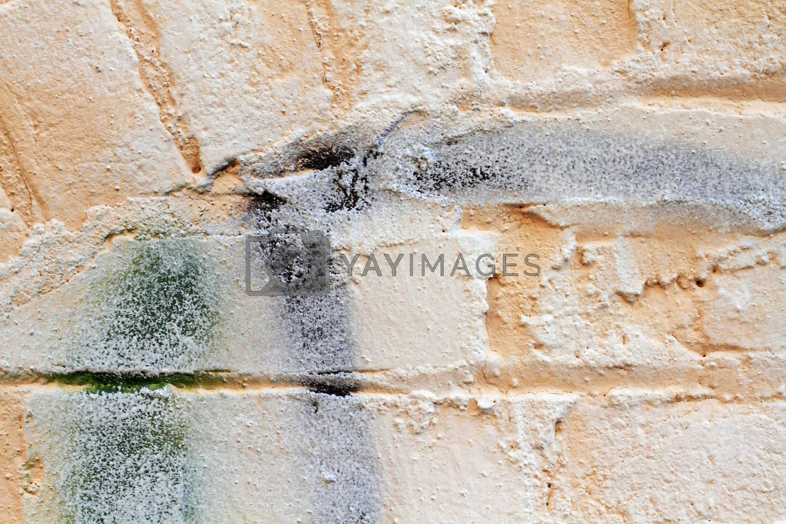 Royalty free image of Brick Wall by StephanieFrey