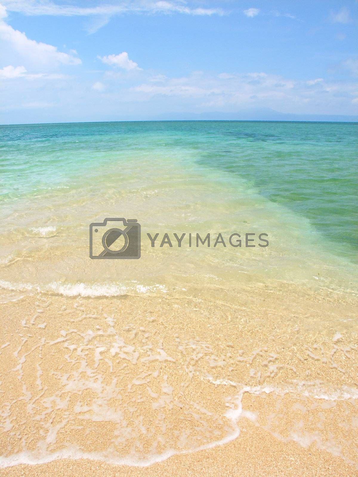 Royalty free image of The Low Isles - Queensland Australia by Wirepec