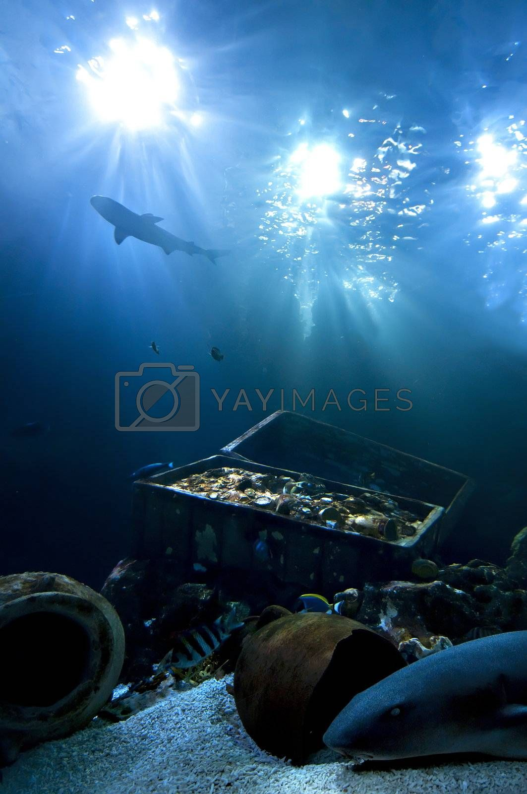 Royalty free image of Treasure of the abyss by AlessandroZocc