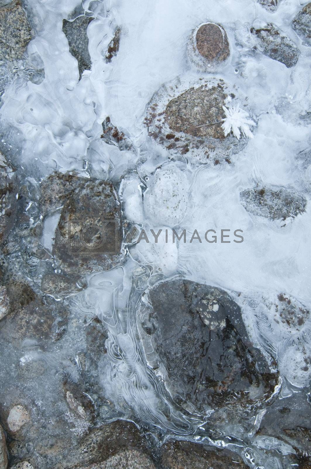 Royalty free image of Ice formations on a mountain river by AlessandroZocc