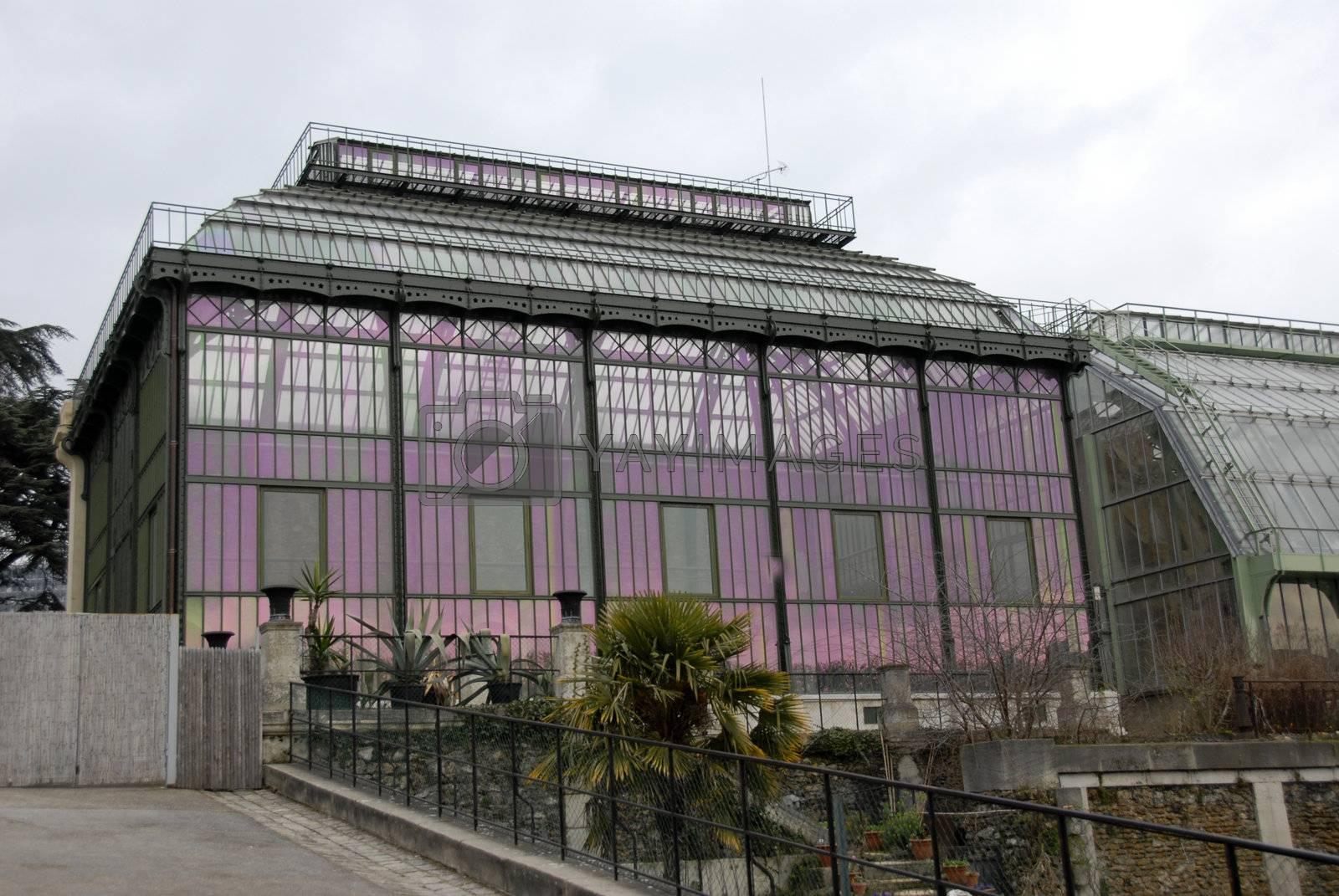 greenhouse of museum d'histoire naturelle in Paris