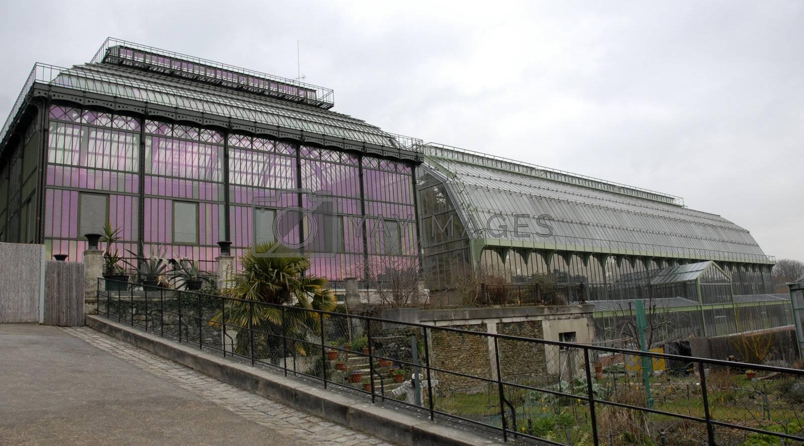 greenhouses of museum d'histoire naturelle in Paris