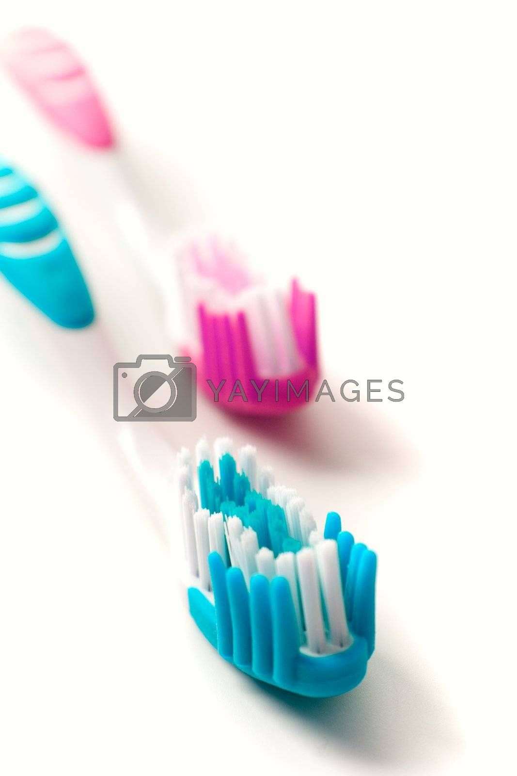 two toothbrushes on white background